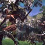 New TERA Information Emerges – Beta and Pre-order Details