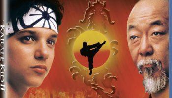 karatekid2bluc