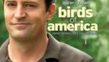 t-birdsofamerica