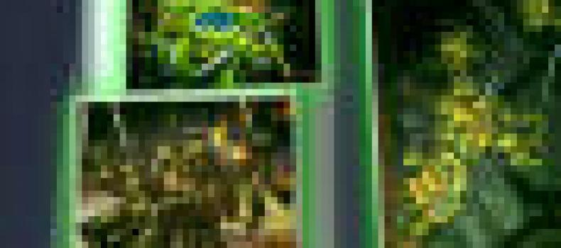 Review: God of War Ascension (PS3)