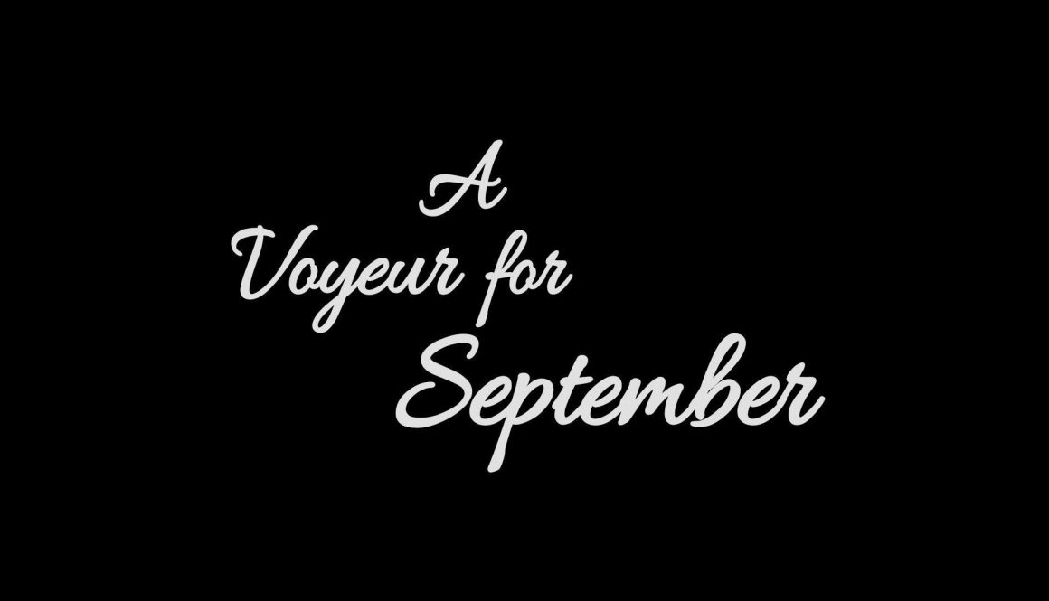 Team Meat Announcing A Voyeur for September