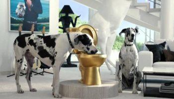 The Sims 3 Pets – Trevor Mountleg