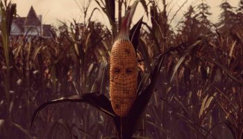 Maize5