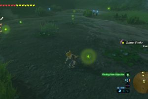 How to Catch Sunset Fireflies in Breath of the Wild – BOTW Sunset Firefly Farming
