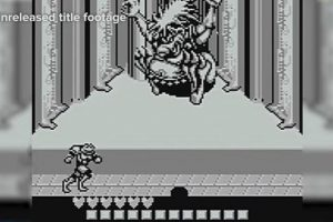 There's An Unreleased Battletoads Game In Rare's Archives