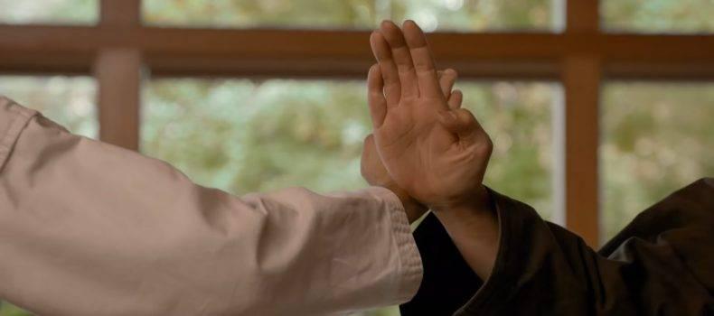 Netflix Releases Cobra Kai Season 3 Trailer